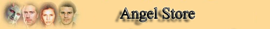 Angel Store Banner