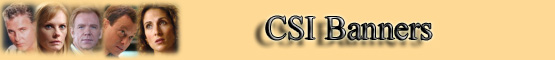 C.S.I. Link to Us Banners banner