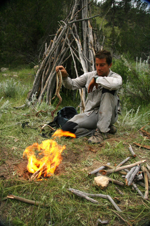 Discovery Channel S Man Vs Wild Primetime Tv Show Articles From